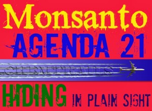 Agenda 21 Chemtrails Monsanto In Plain Sight